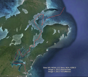 Our approximate route through the straits