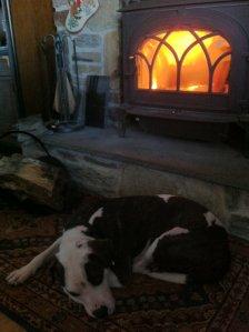 Jingxi keeping warm.
