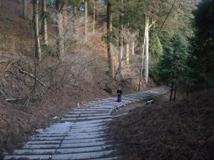 The trail down... it got much, much darker!