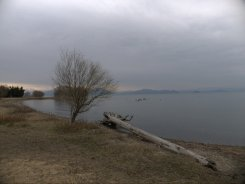 My campsite view.