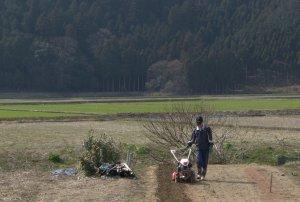 Oto-san preparing to plant potatoes.